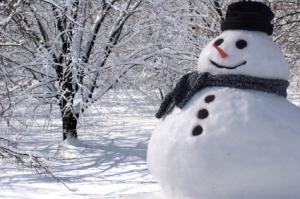 Snowman-winter-13347578-425-282