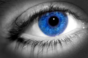 blue_eyes_rule_the_world_by_damsgirl-d5eifg9